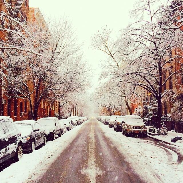 NYC snow day
