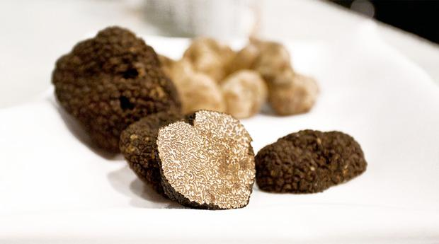 Truffle at Eataly