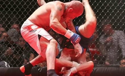 Victory 3 MMA