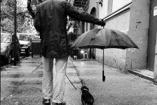 Umbrella for the dog