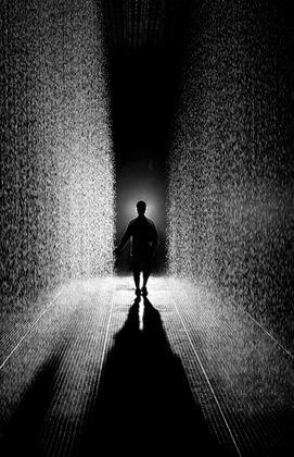 MoMA | Rain Room