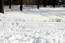 I love central park winter